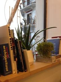 Books next to the window
